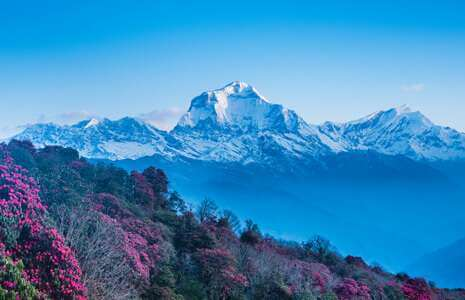 Visit Nepal 2020 Special Tours