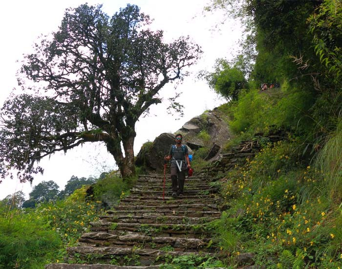 Stone Stairs along the ABC Trek Trail