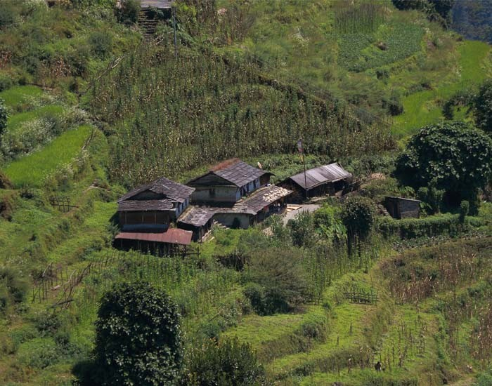 A Typical House in Annapurna Base Camp Trek Trail